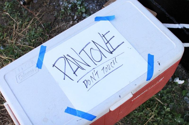 felipe-pantone-for-pow-wow-hawaii-03