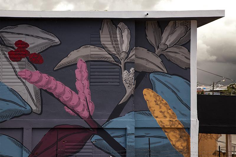 pastel-new-mural-san-juan-puerto-rico-02