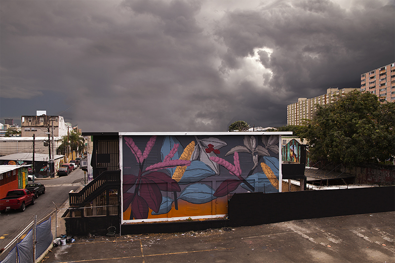 pastel-new-mural-san-juan-puerto-rico-04