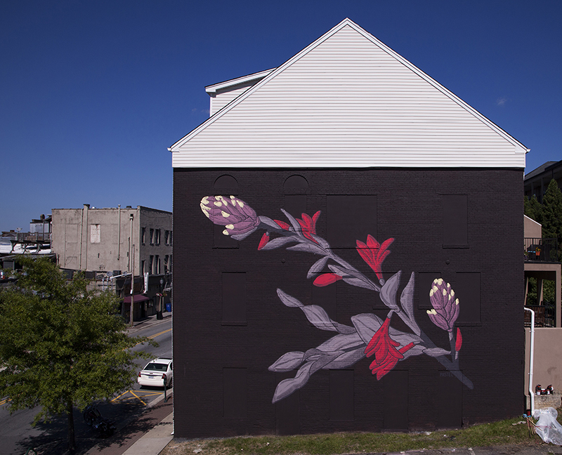 pastel-new-mural-greensboro-usa-02