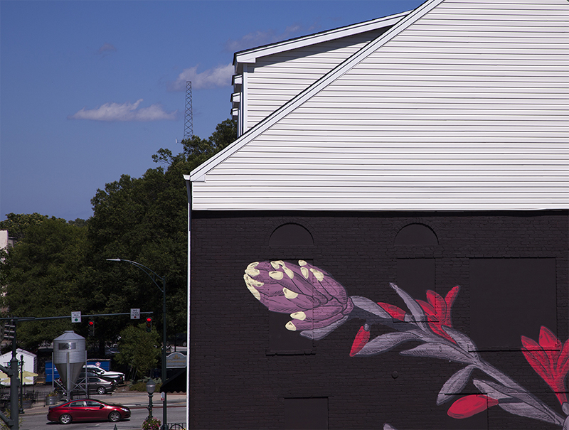 pastel-new-mural-greensboro-usa-03