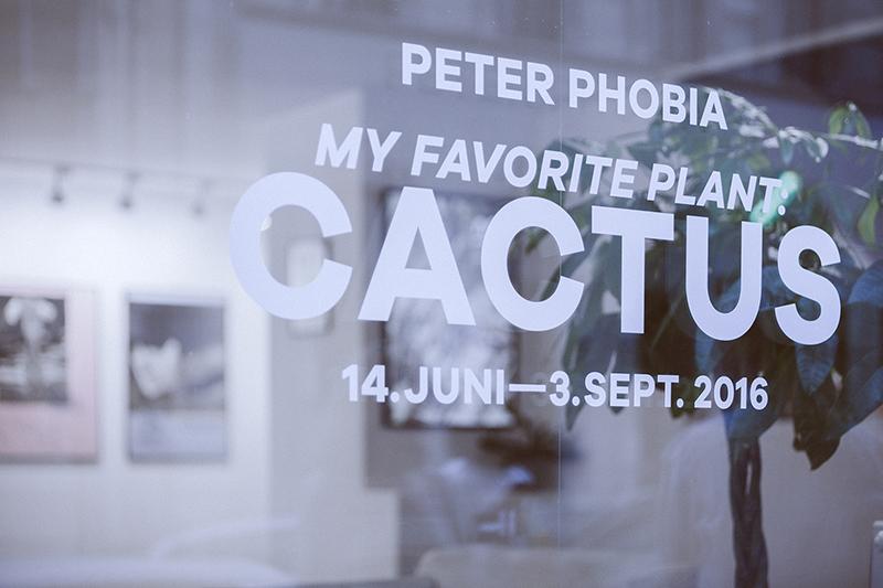 Peter Phobia -my-favorite-plant-cactus-recap-01