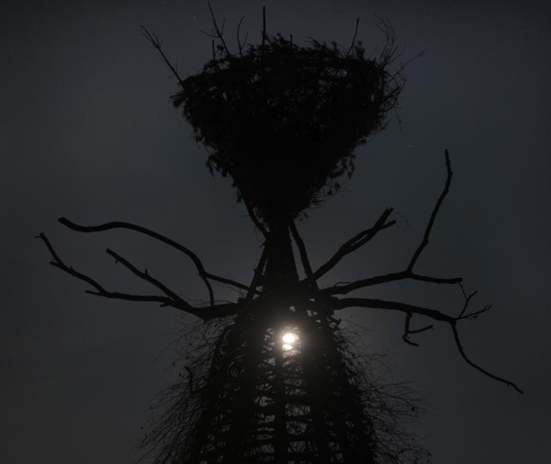 gola hundunyggdrasil-cromlech-installation-14