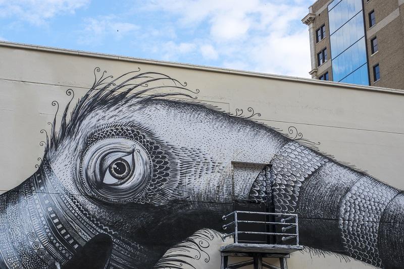 phlegm-new-mural-jacksonville-09