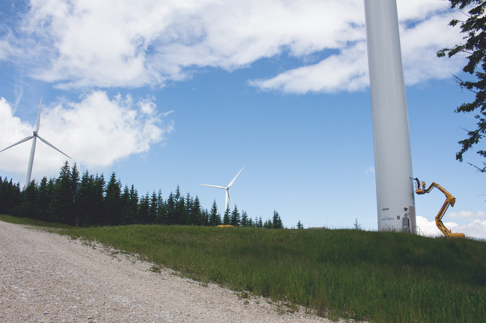 MAFIA TABAK ZSOMBOR SÁLI Two Months, Two Windmills