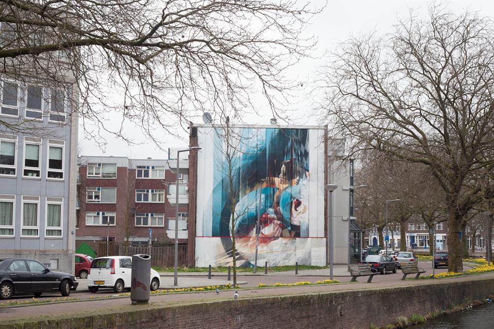 Vesod Rotterdam Sober Walls