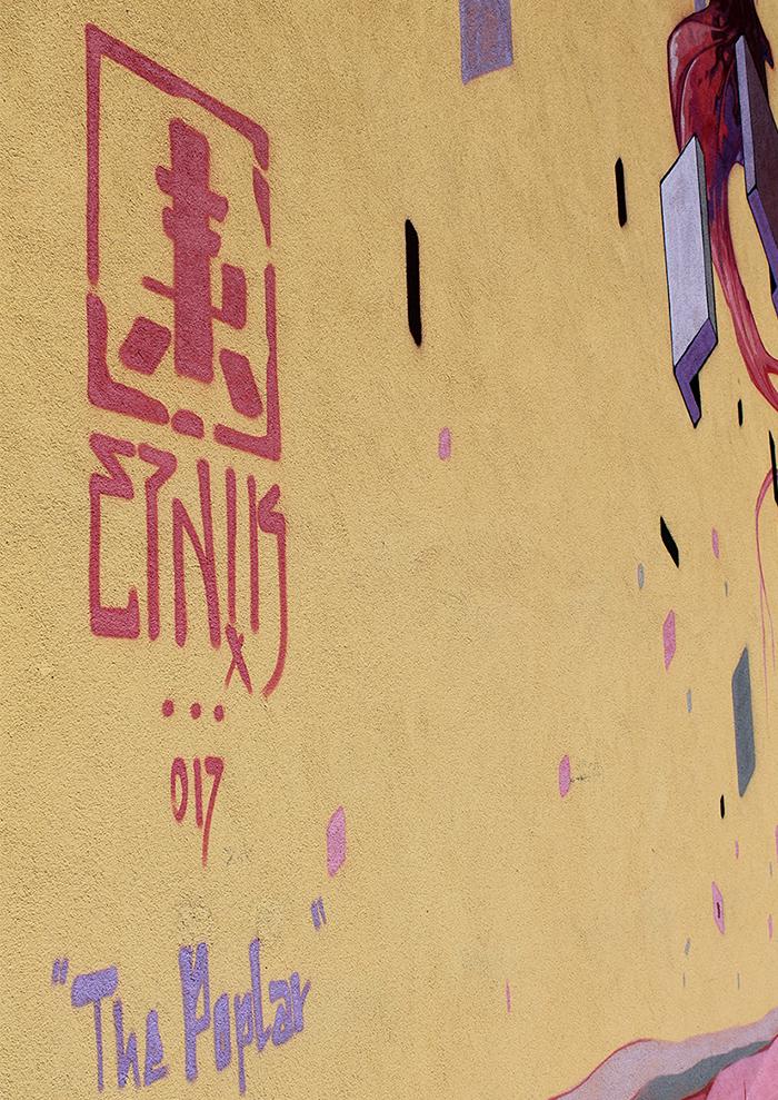 Etnik Street Art Without Frontiers Lunetta Mantova