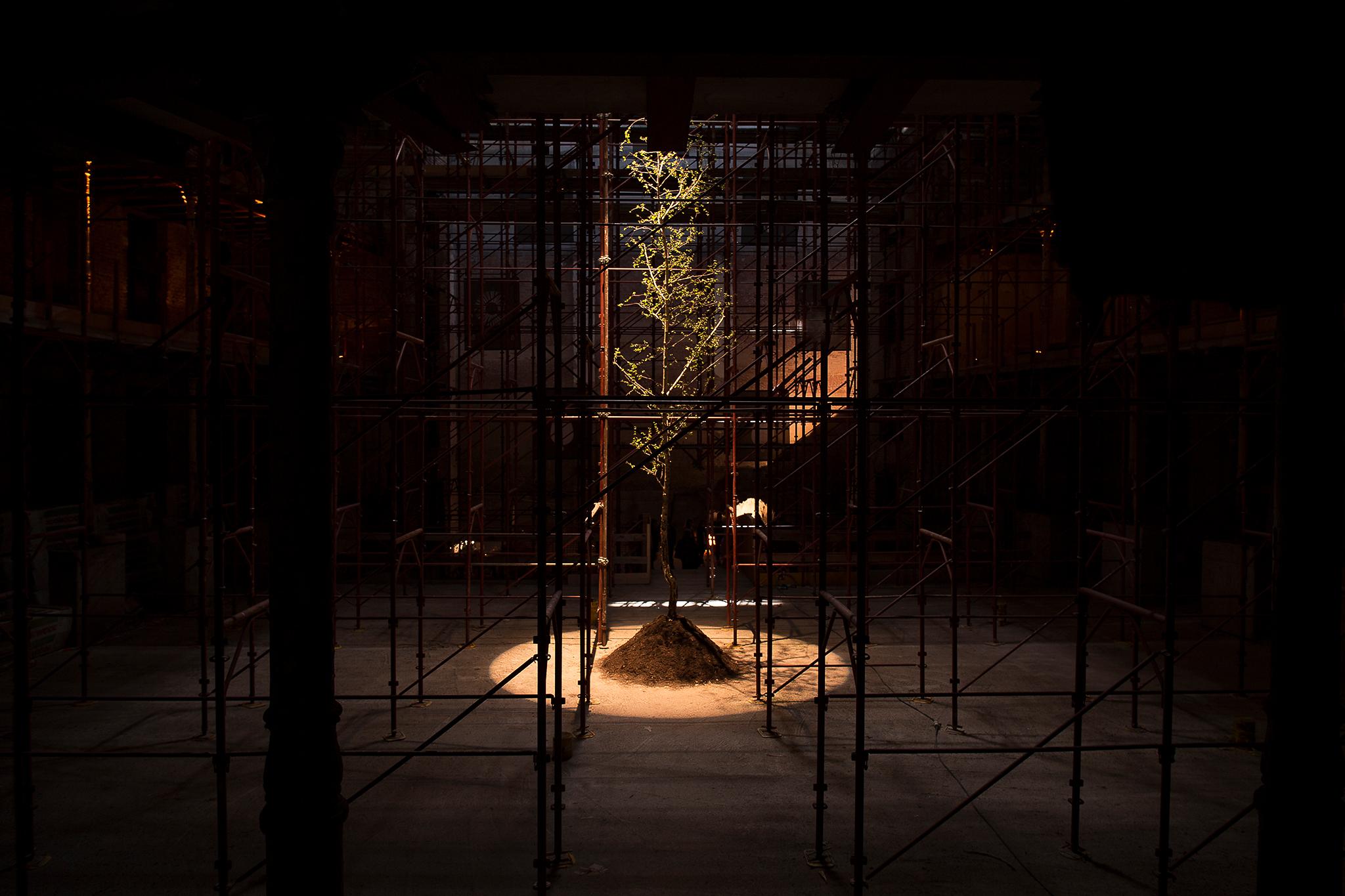 Andreco Intrepida Ferrara Ex Teatro Verdi Performance