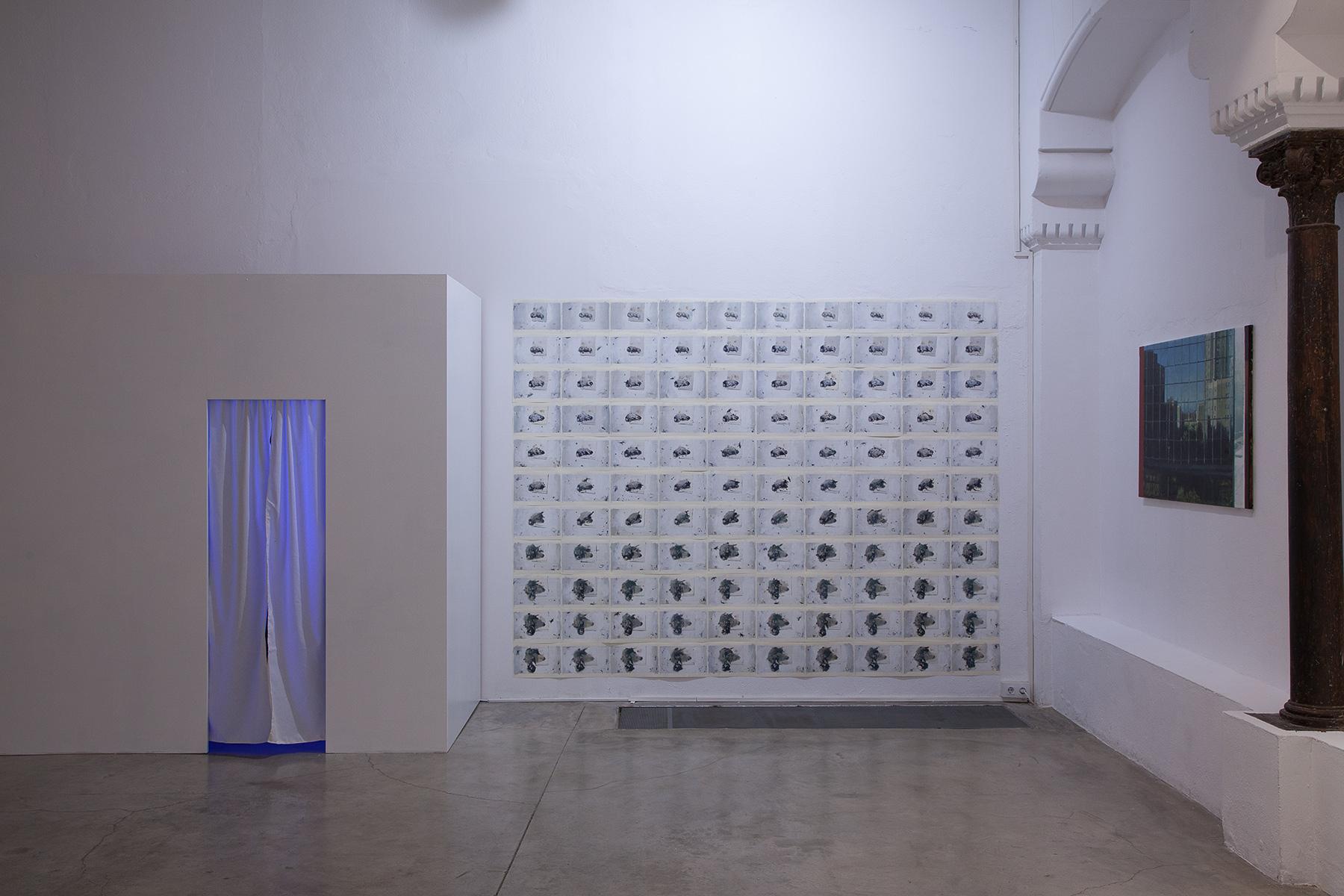 Axel Void Delimbo Gallery