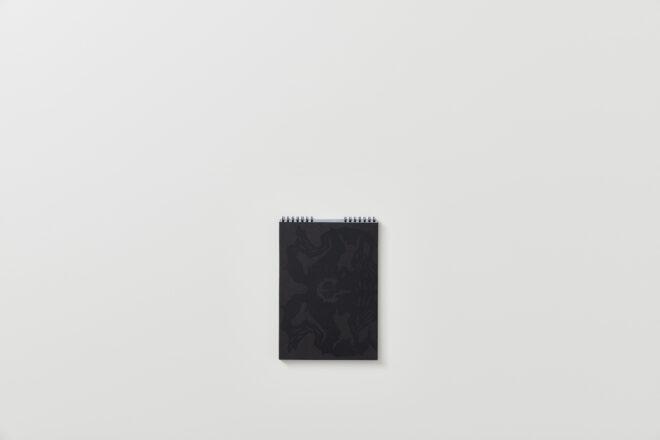 Formula Aris Libro d'artista
